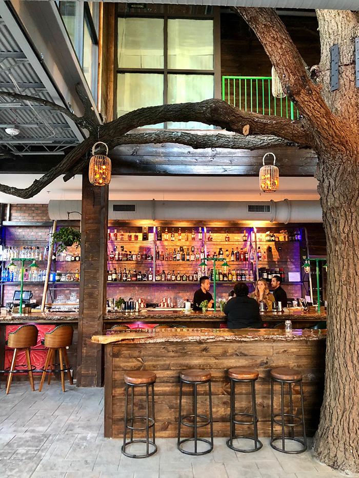 cocktail-bar-at-charlotte-beer-garden
